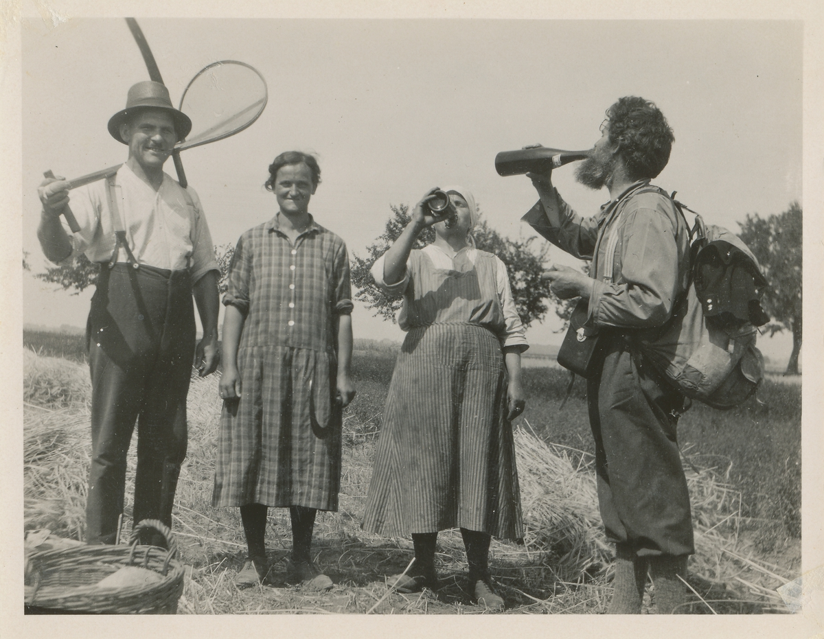 Tre mennesker som driver kornskurd og en mann med ryggsekk identifisert som Ingvald Skjeldrup. Skjeldrup og ei dame tar en slurk av en flaske med ukjent innhold.