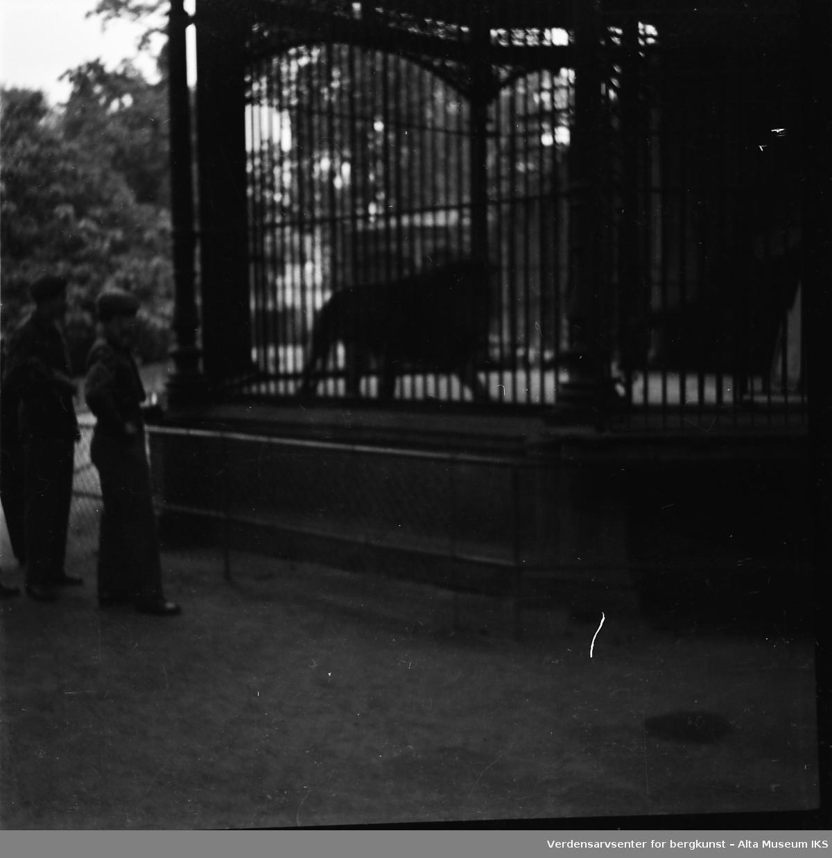 To uniformerte menn beskuer et dyr i bur. De er i en park.