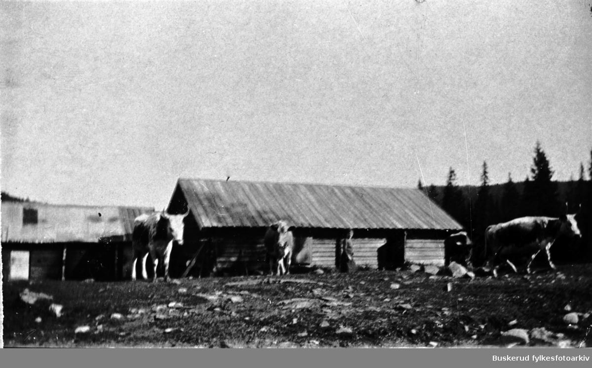 Øvre Stubdal seter Johan Ultvedet eide seteren som brant i 1930