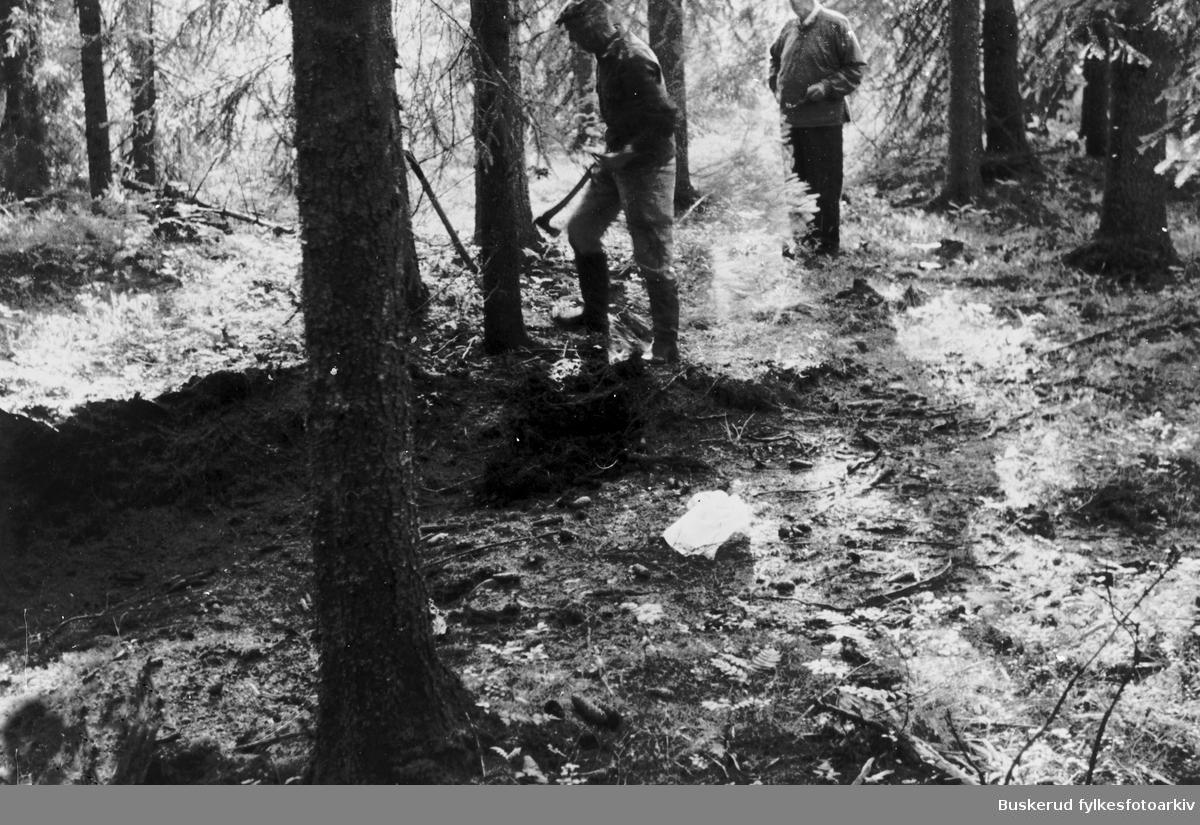 Løvlistykket i Nordmarka Fra en Kølabon i Løvlistykket syd for Løvlia, vest for Lomma. Tv. Erik Nøkleby, Reidar Holemark