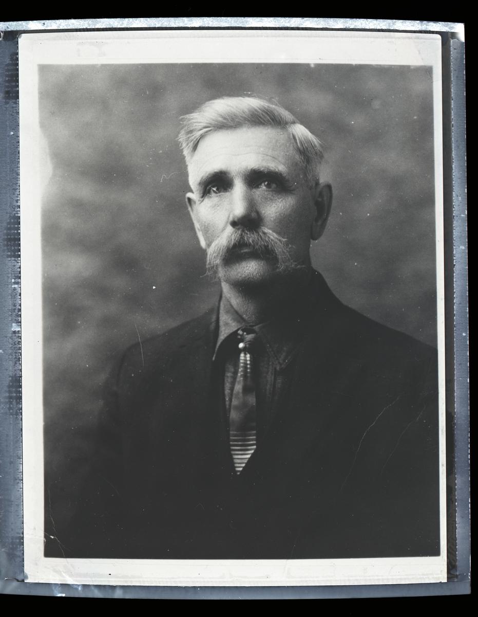 Mann avbildet i halvfigur. Han har mørk jakke og skjorte, slips og stor grå bart. Håret er også grått.