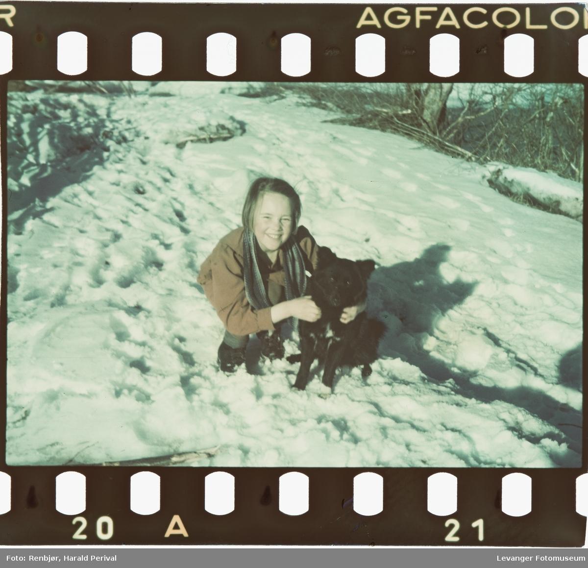 Jente leker med hund i snøen.