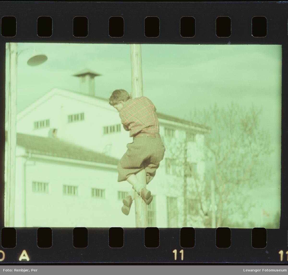 Gutt klatrer i stolpe på 17.mai.