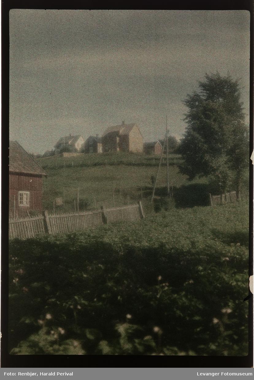 Kulturlandskap i Levanger.