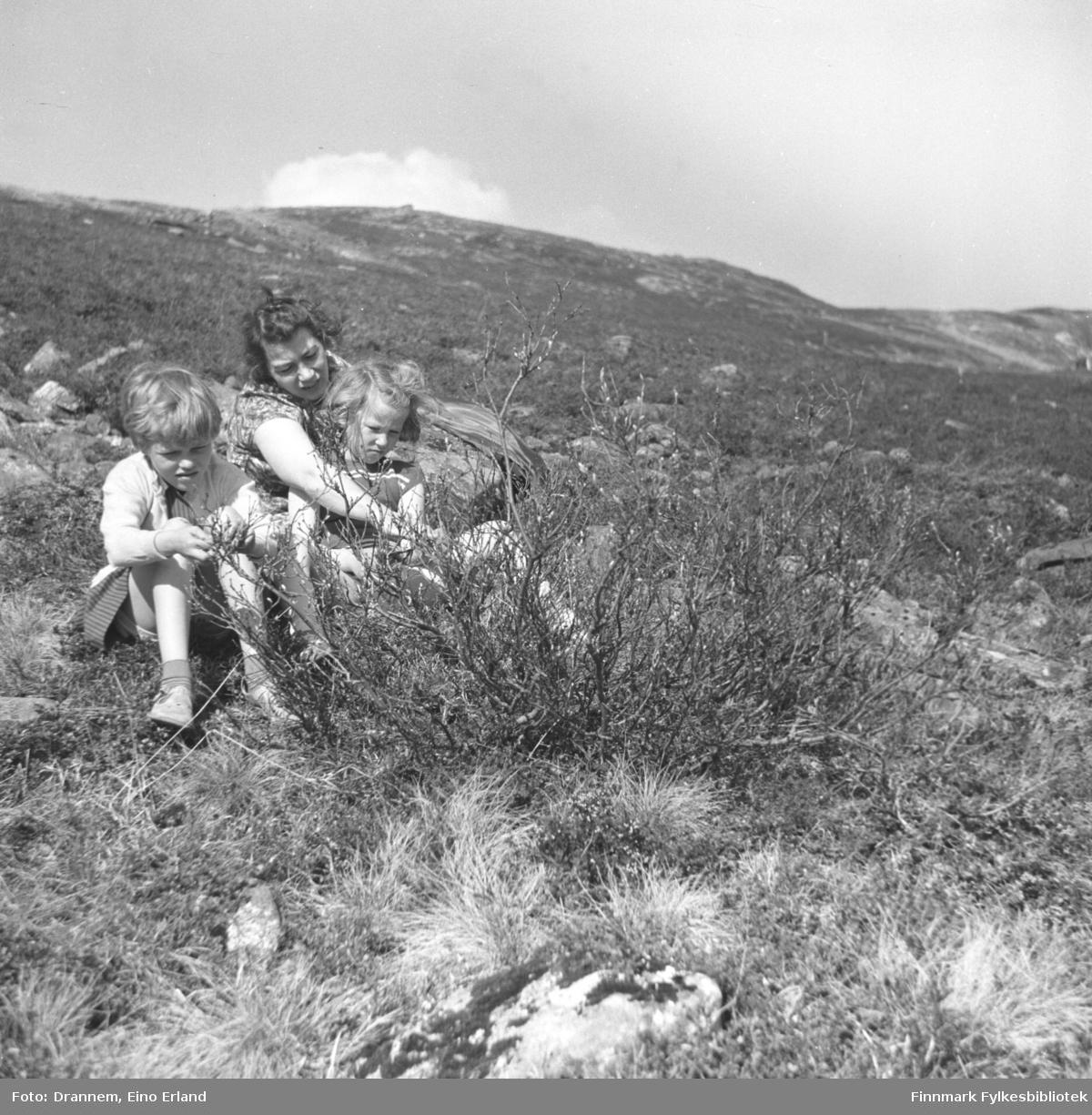 Jenny og Turid Lillian (Drannem) og Vigdis Hansen studererer fjellets vegetasjon