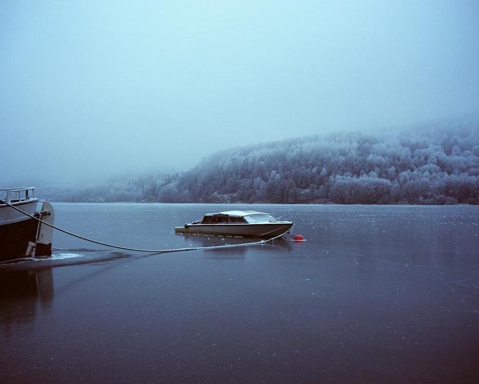 Fotografiene antyder iscenesettelse av natur og dyr i landskap. Fargen og opplevelsen av noe lyst eller hvitt går igjen. Med det hvite får kunstneren frem opplevelser av letthet, klarhet og uskyld.