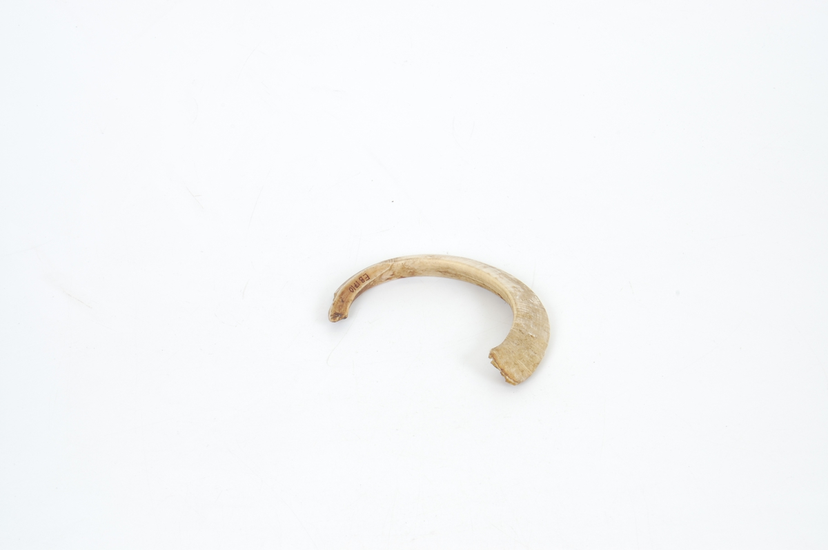 Form: Sterkt krumm., ene enden tilnærm. spiss, buet struktur i overfl. på tvers av krumm.
