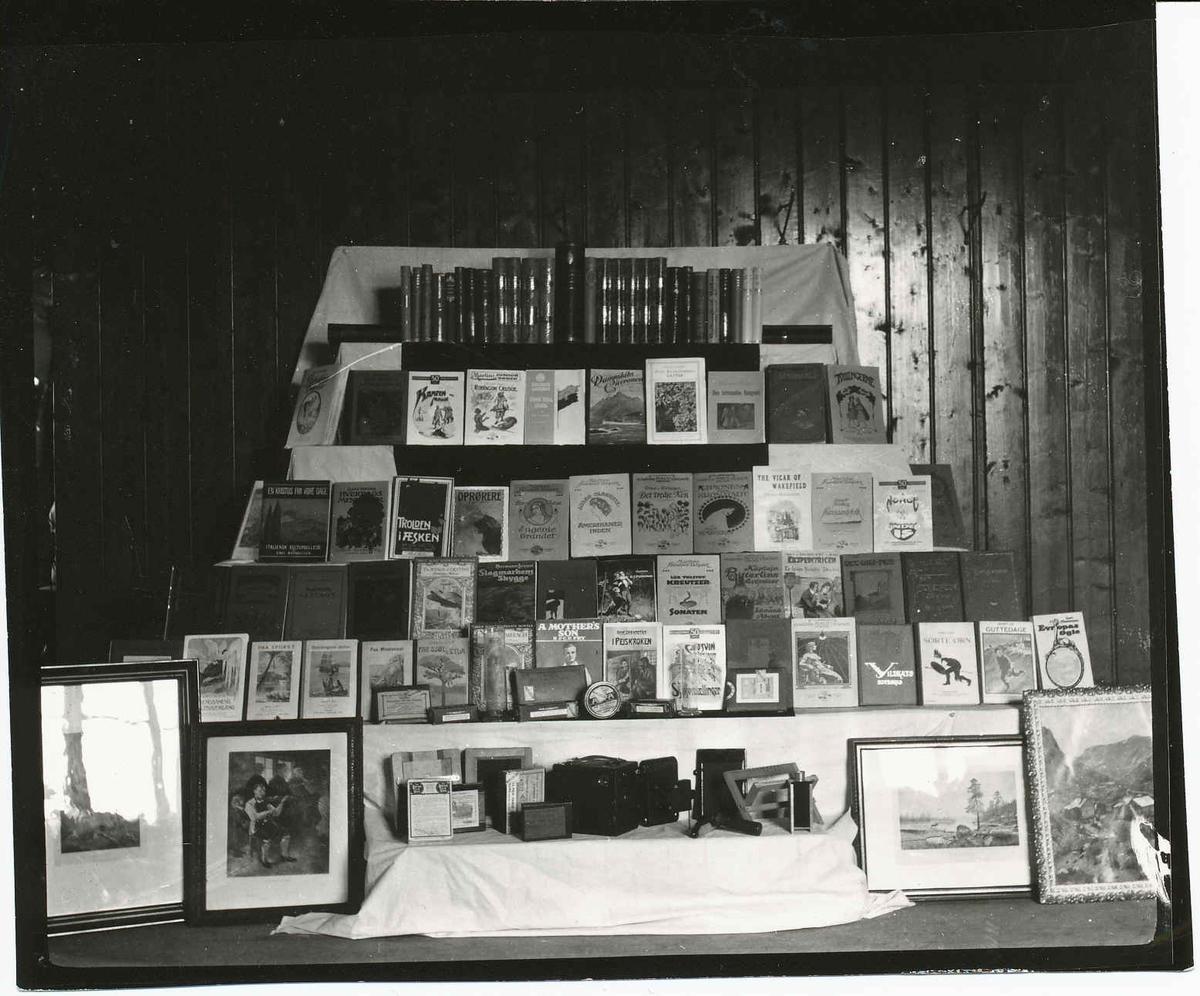 Display med bøker, malerier, etc. Premiebord?