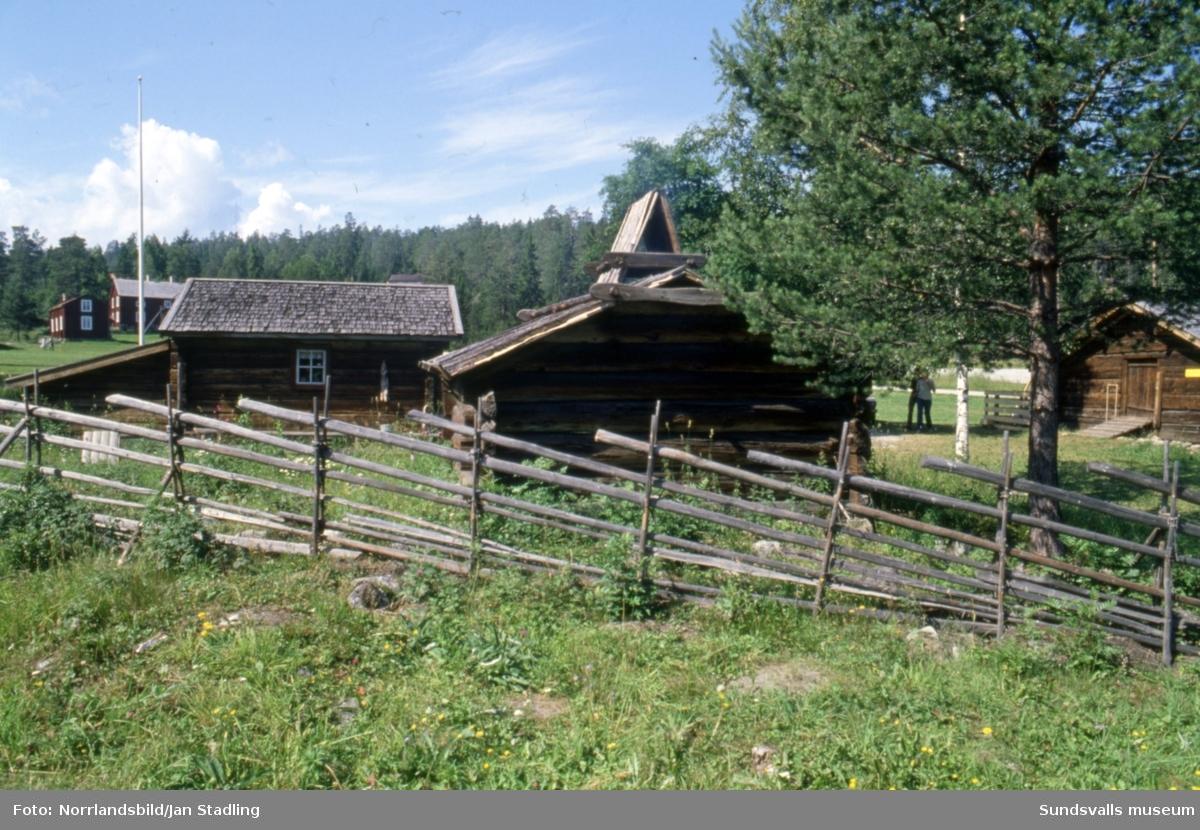 Sommarbilder från Norra bergets friluftsmuseum med byggnader, getter, butik, krukmakeri och besökare.