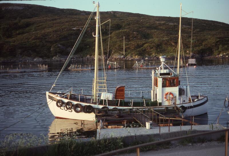 Losskøyta Trondheim ved kai (Foto/Photo)