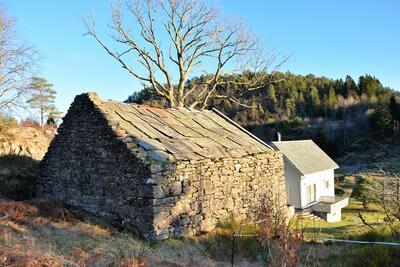 steinløe med eit tre og eit kvitt trehus bak, solskin på landleg landskap. Foto/Photo