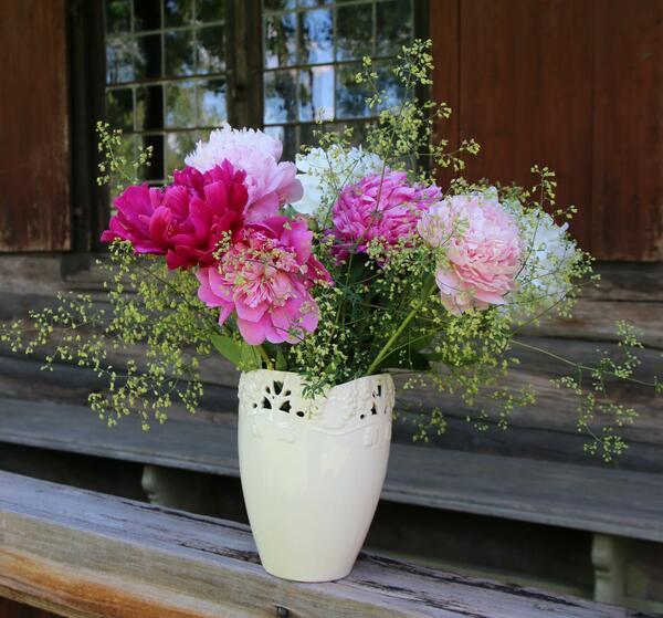 Silkepioner i bukett med frøstjerne. Foto/Photo