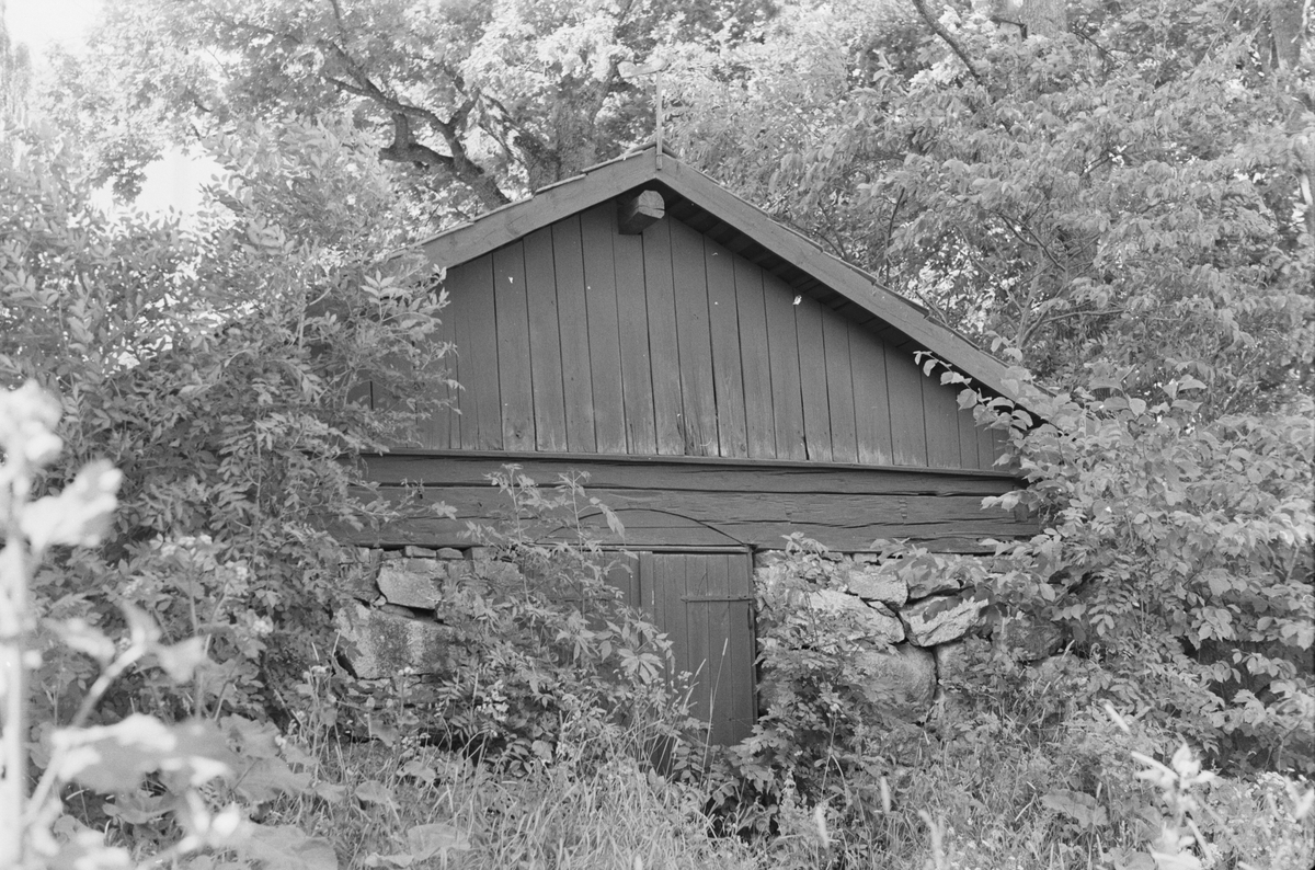 Källare, Brunna 1:1, Brunna gård, Vänge socken, Uppland 1975