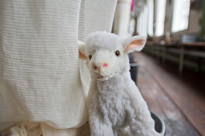 kosedyr-sau, maskoten Bændik på Tekstilindustrimuseet (Foto/Photo)