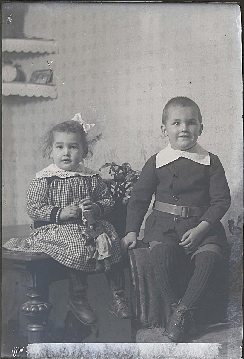Fotografering beställd av F.E. Andersson. Föreställer sannolikt Frans Erik Anderssons barn Frans Harald Mauritz Alsbo (1915-1919) och Hildur Viola Kristina, gift Mårdstam (1917-2008).