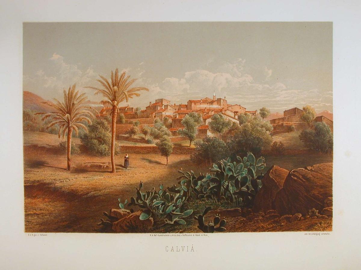 Landsby med kaktus og palmetrær i forgrunnen