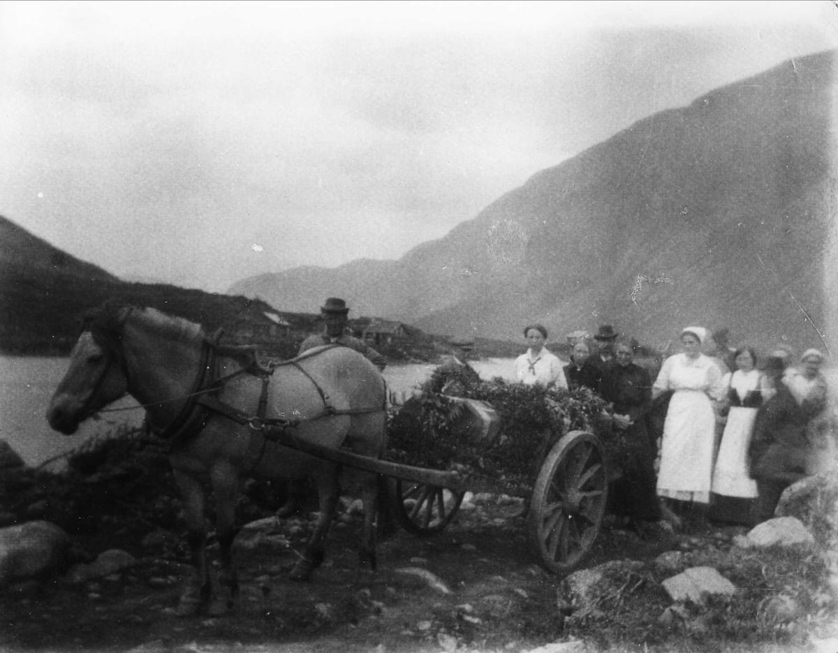 Begravelse, hest, vogn,