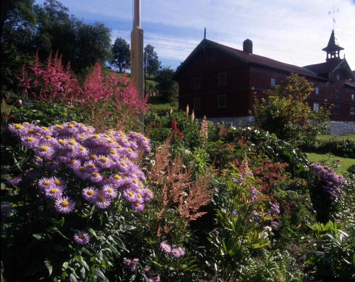 DOK:2000, Aulestad, hage, blomster, låve,