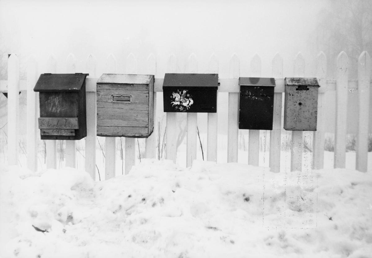 postkasser, private, henger på et gjerde, snø på bakken, eksteriør