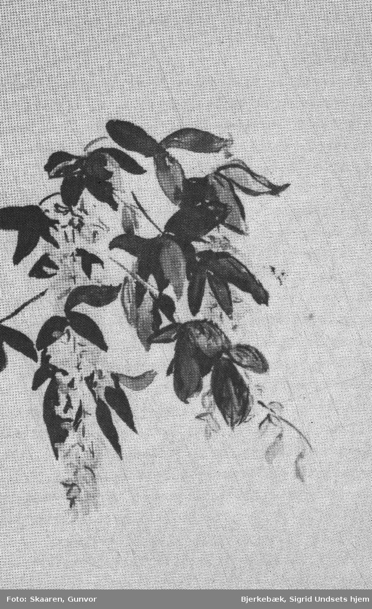 Blomster, tegning,