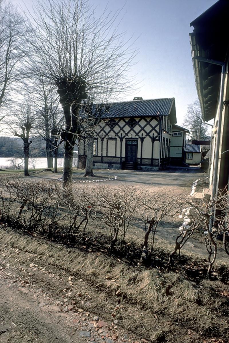 Frednes. Hus i sveitserstil.  Landsted ved Longumvannet. Beskåret tre i forgrunnen.
