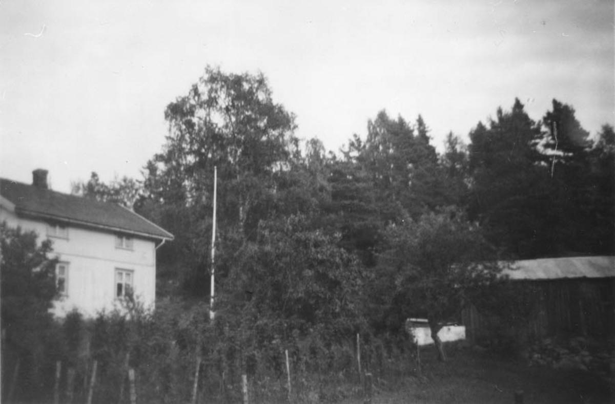 Gård/hus i skogkanten mellom Tømt og Myrbråten.