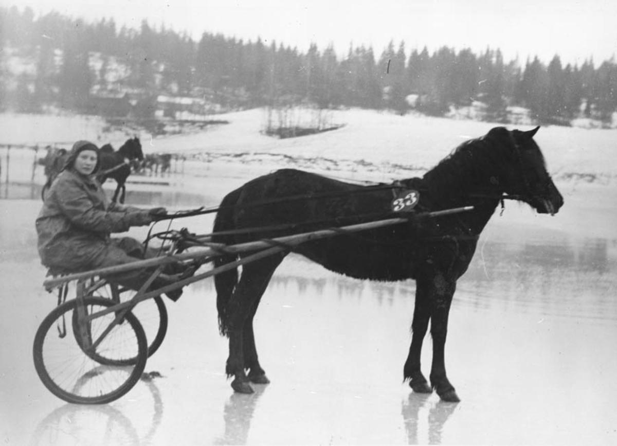 Hest med sulky og kjører, på et islagt vann.