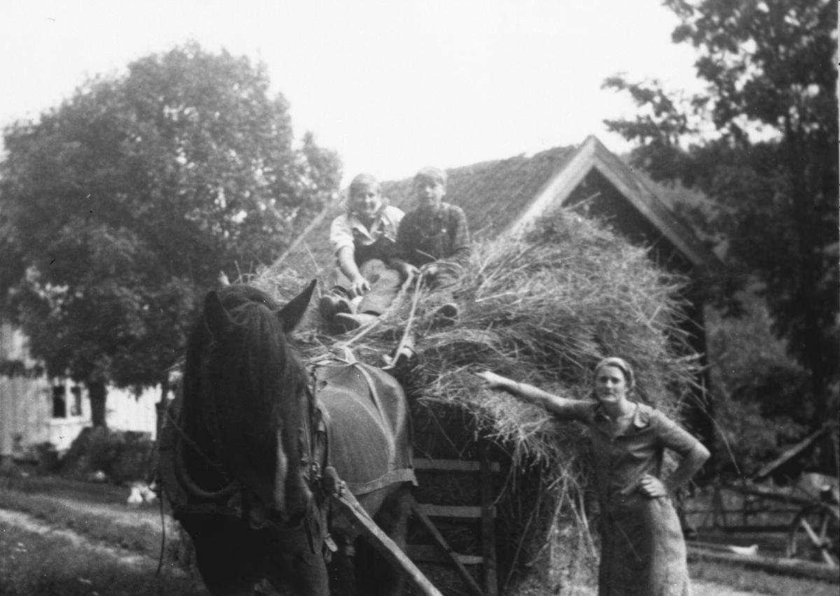 Else Margrethe og Jens på høylasset.