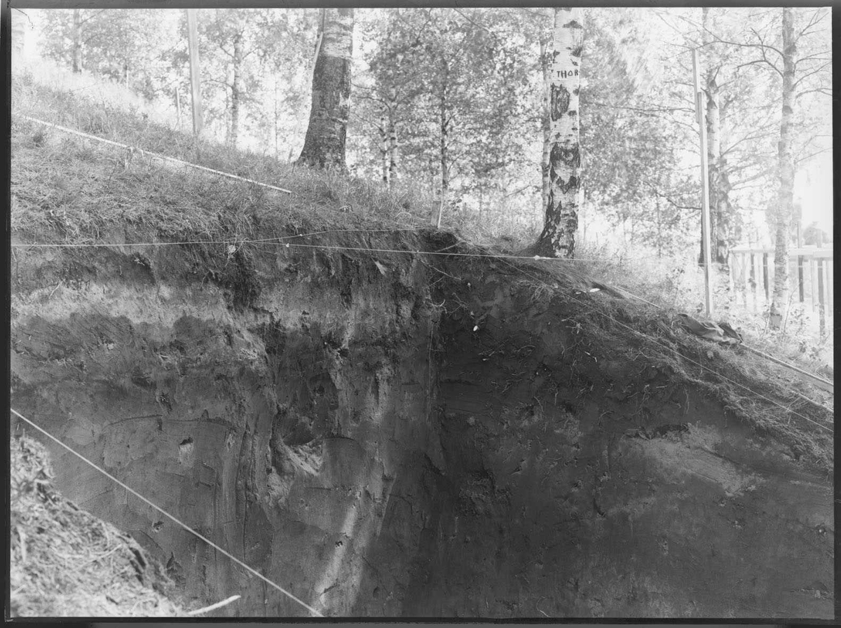 Utgraving av Raknehaugen.