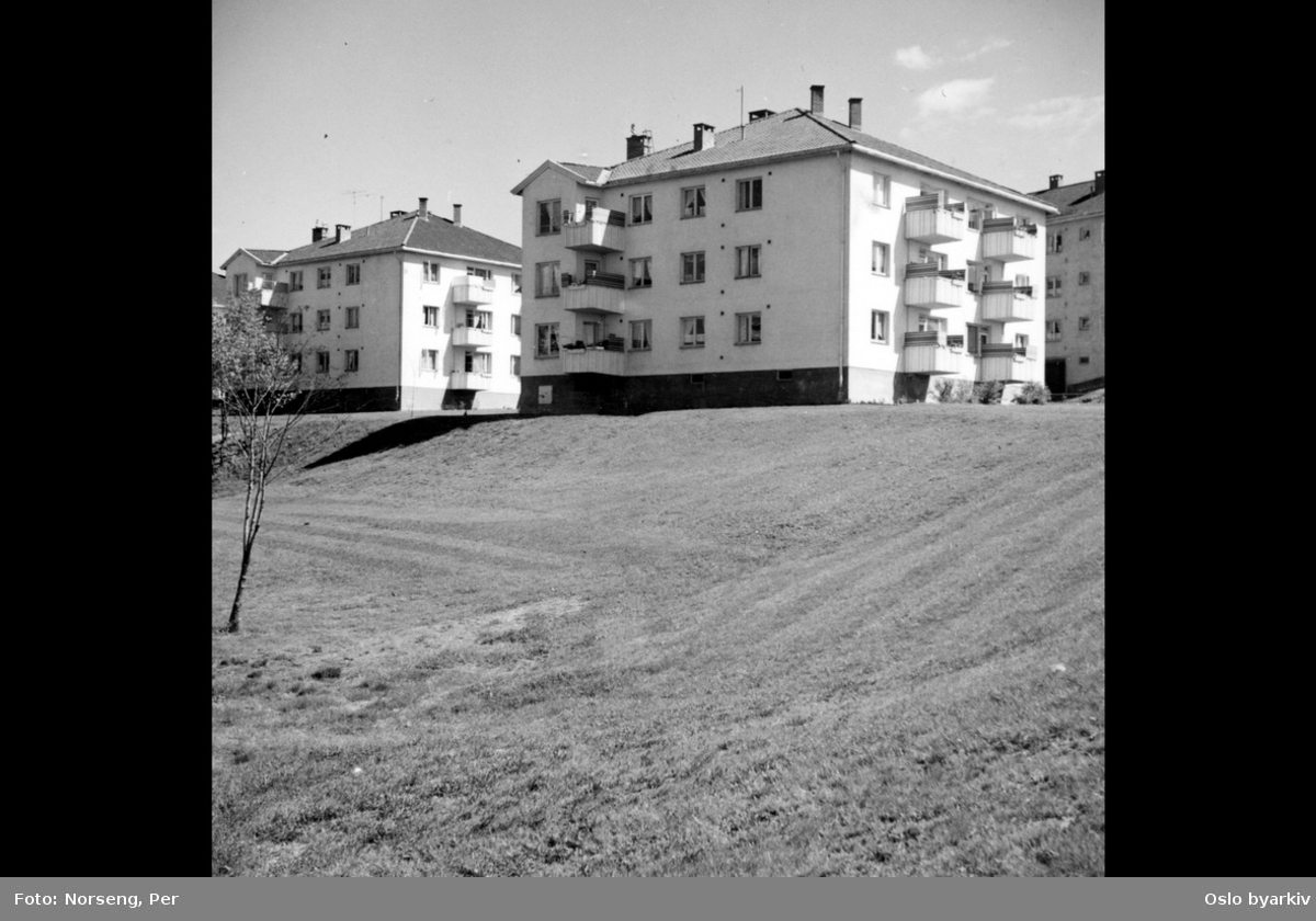 Lilleberg, boligblokker, grøntarealer