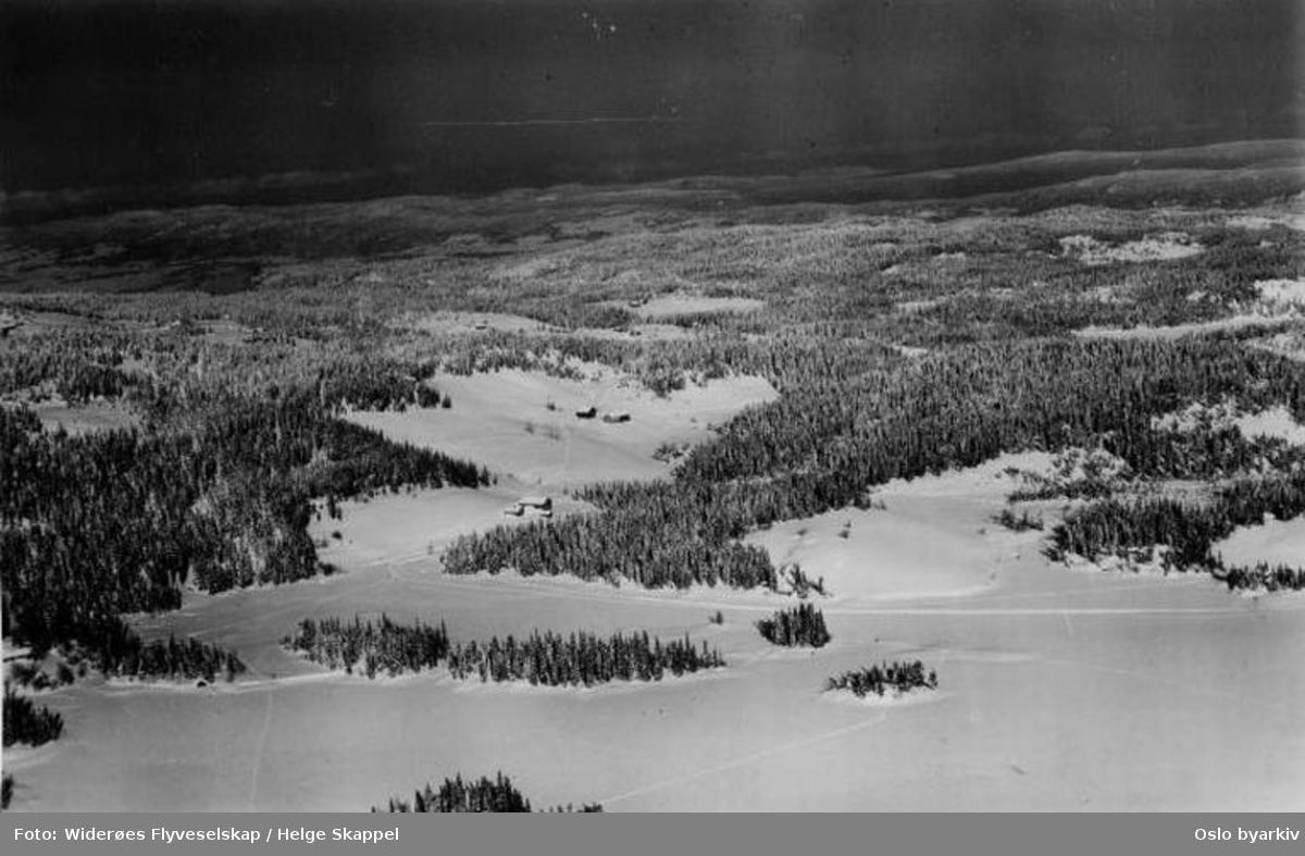 Nordmarka, snø, vinter, skog (Flyfoto)