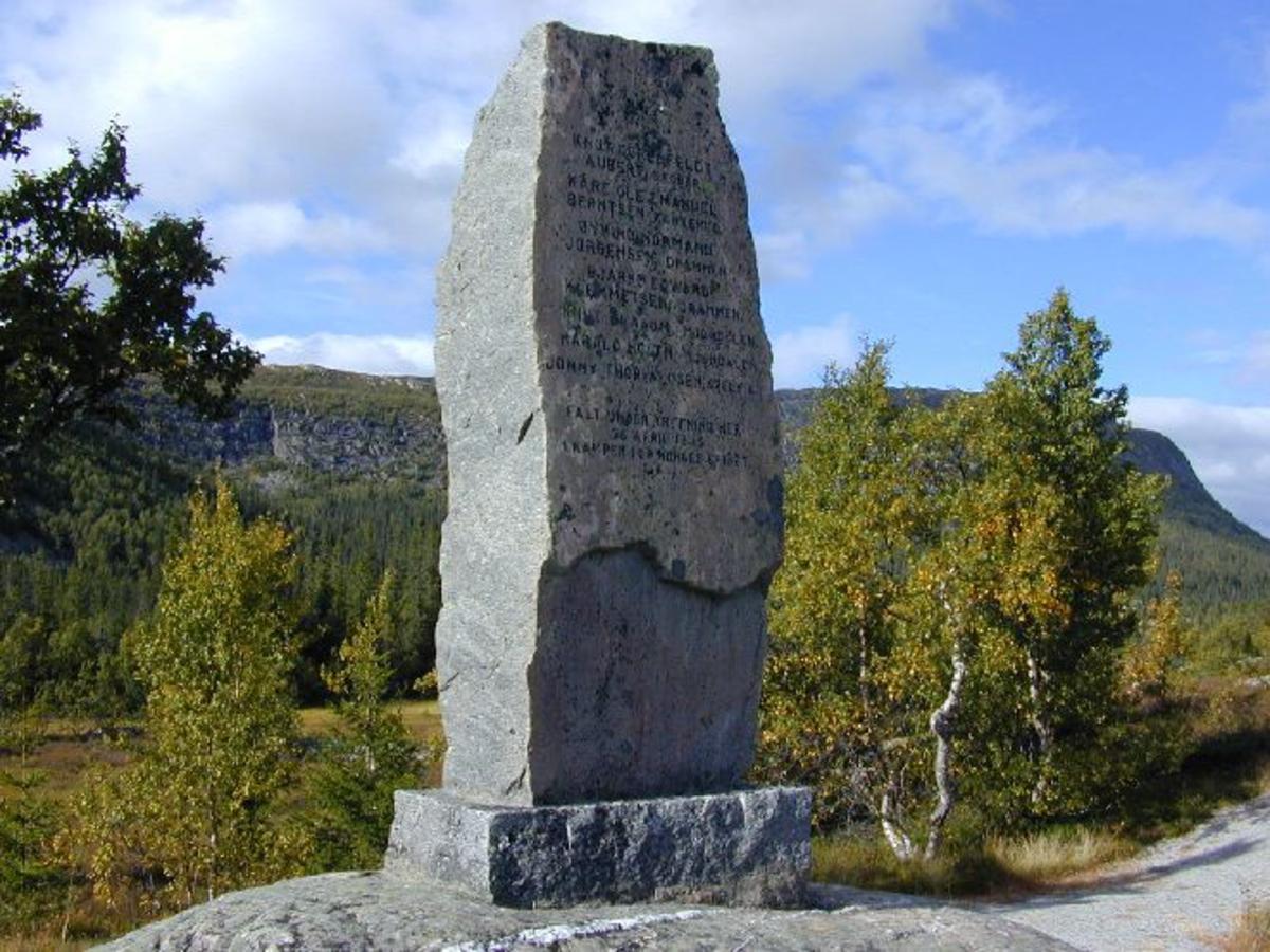 Ca 170 cm høy stein med innhogde navn på falne. På motsatt side innfelt plate der motivet er 2 soldater, en liggende og en stående som holder et norsk flagg.