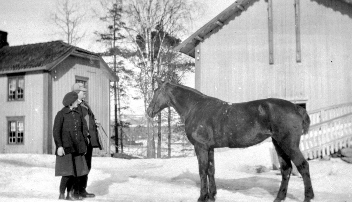 """Lily og Thore Bjerke med hesten """"Miss"""" på Nerkvern gård, Brumunddal. Vinter."""