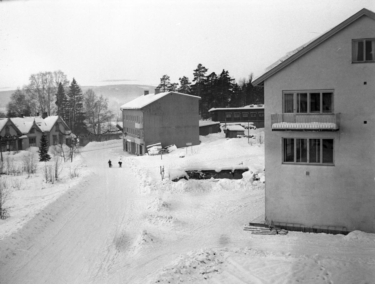 Vinter i Leiret