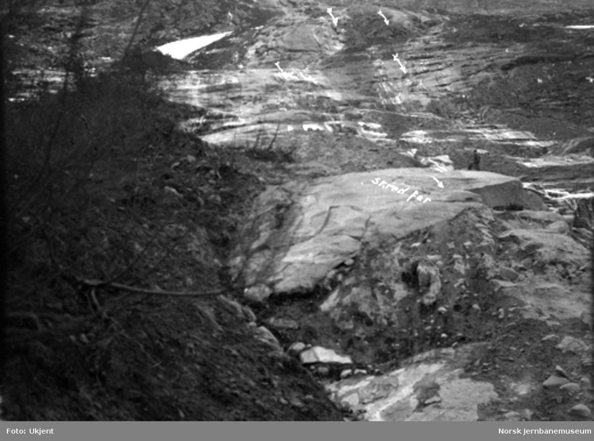 Jordskred ved Verma 9.6.1926 : sett oppover skredfaret ved tregrensen