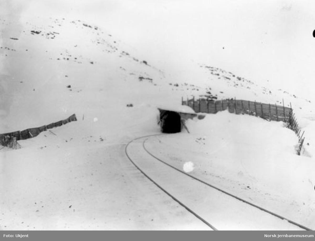 Linjeparti ved Svartevandsoset (pel 6850) med snøskjermer og en overbygget tunnelinngang