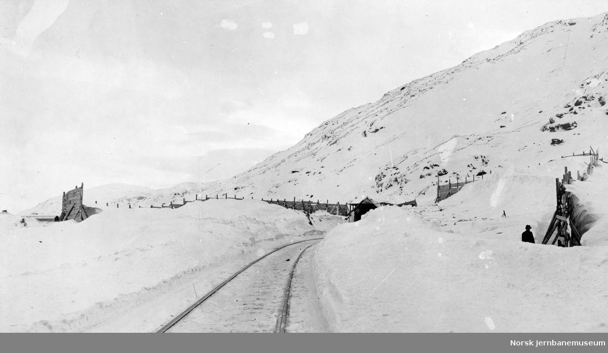 Snøskjermer og snøoverbygg ved km 41,1 - riksgrensen