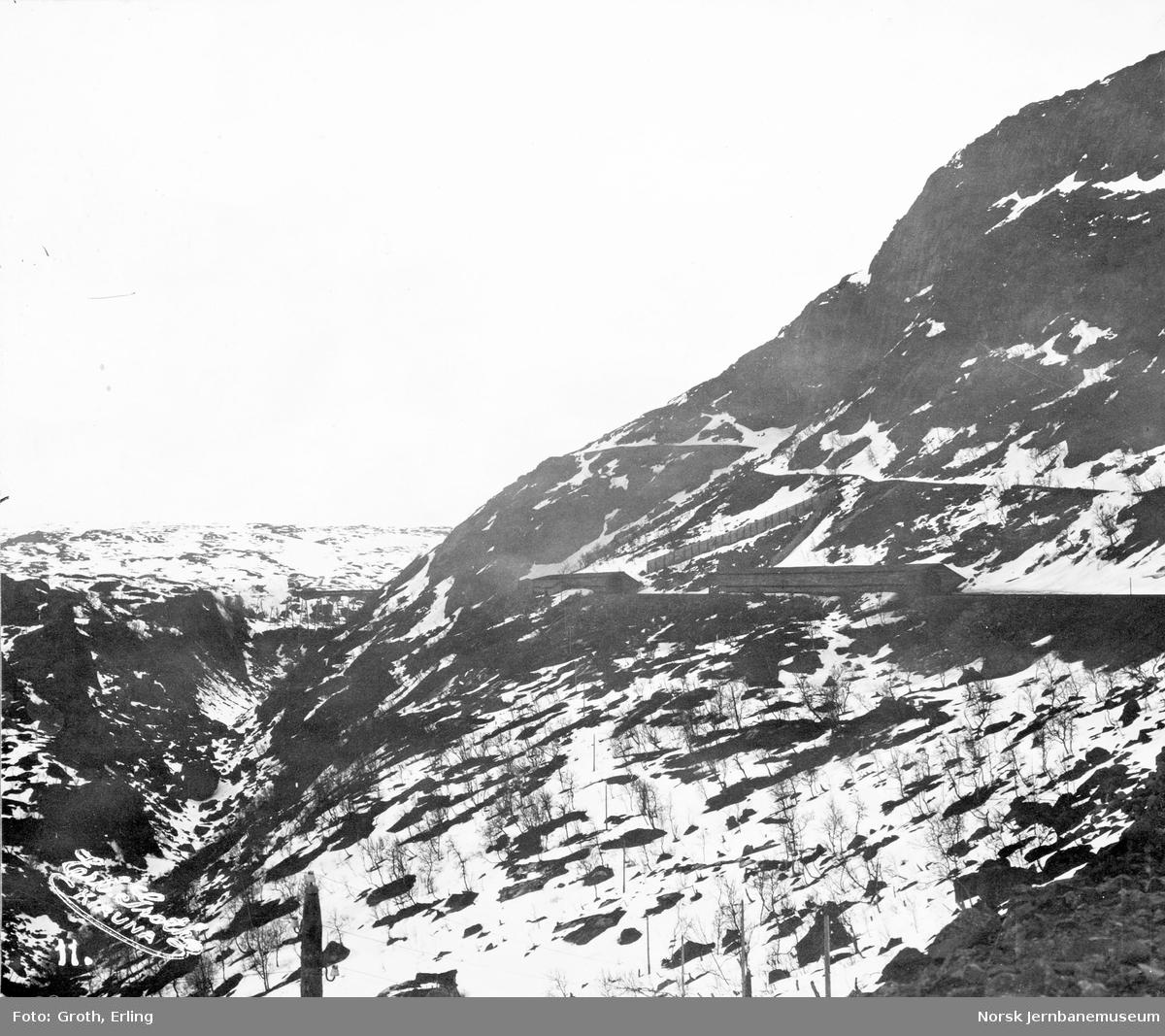 Utsikt fra Norddalen østover