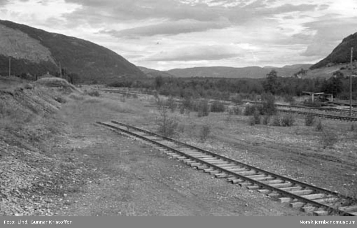 Nordlandsbaneanlegget : planering for Nestby holdeplass