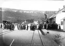 Serie bilder fra Lierbanen og Verdalselva bru i Verdal (1904