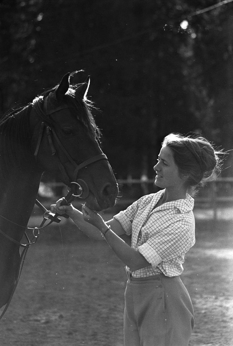 Fra Oslo juni 1962. Kvinne som holder en hest på Ballsletta.