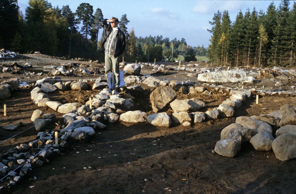 Utgrävning av ett romartida gravfält vid Graneberg, Litslena socken, Uppland 1994