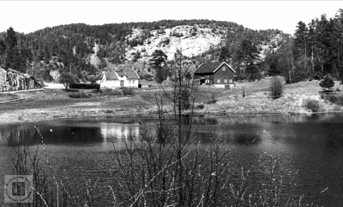 Garden Bronneset, Bjelland