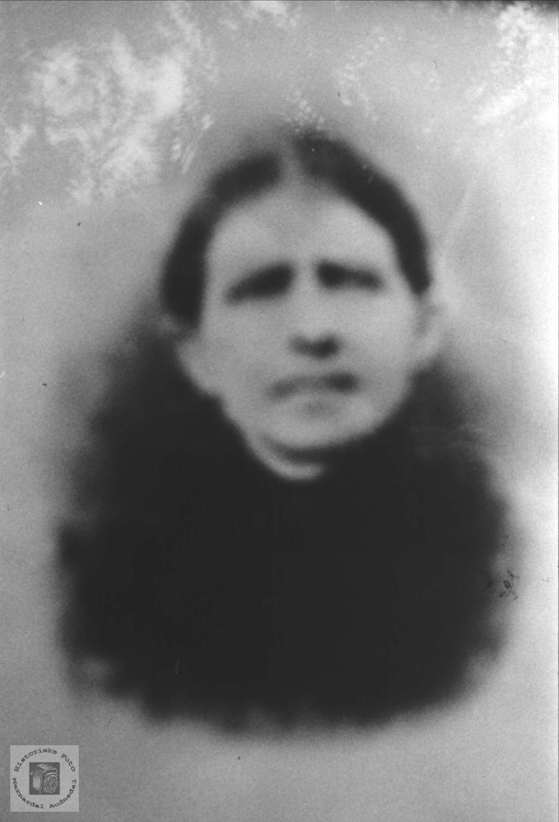 Portrett av Oslou Rødlende.