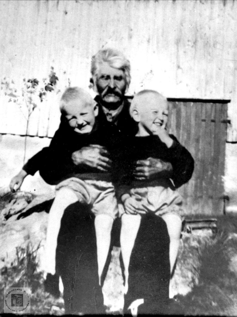 Bestefar med tvillingane Søren Sterkuldson med Magne og Ståle Haraldstad, Bjelland.