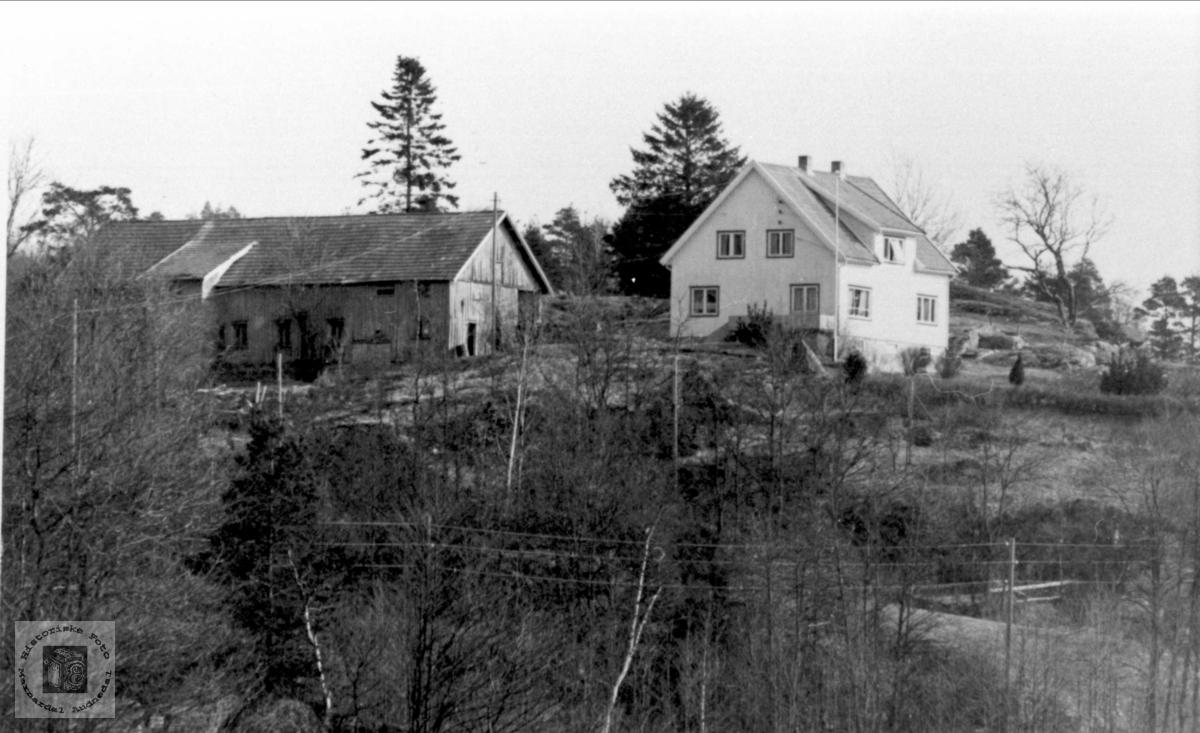 Krogågeren Birkeland i Øyslebø.