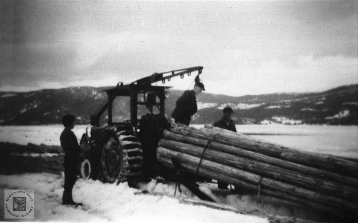 Tømmerkjøring Nissedal av firmaet Terrengransport.