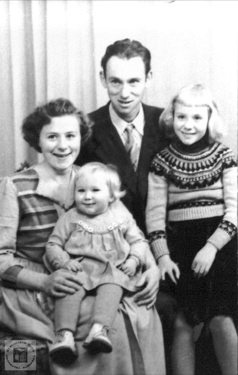 Familen Høye