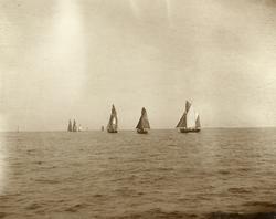No. 38. Drivgarnsflaaden under udseiling fra Aalesund 1899