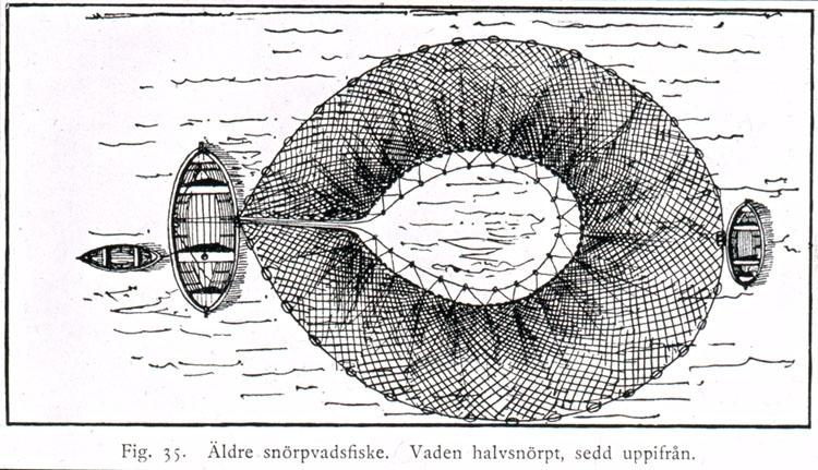 """Text på skioptikonplåten: """"Fig. 35. Äldre snörpvadsfiske. Vaden halvsnörpt, sedd uppifrån."""""""